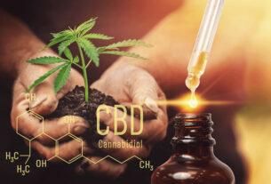 Olejek CBD 5% - czym jest i kiedy warto stosować